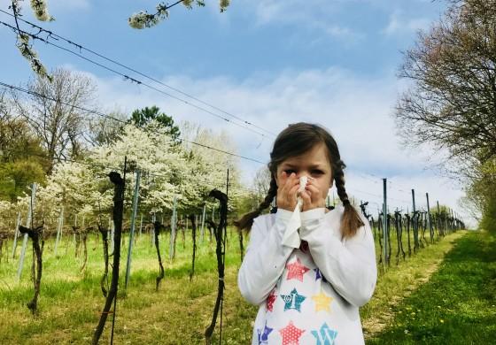 TEM bei Pollen- und Gräserallergie